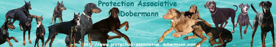 DOBERMANN PAD ADOPTION