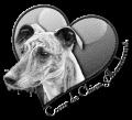 coeur-chien-abandonne.png