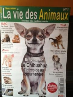 mag-la-vie-des-animaux-1.jpg